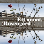 EttAnnatRosengard